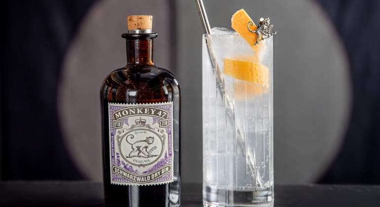 ginebra-gin-tonic-autentico